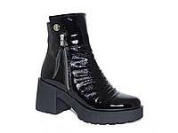 Лаковые демисезонные женские ботинки Donna Ricco №Н-490