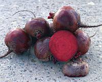 Семена свеклы Болтарди, от 3 г, Syngenta