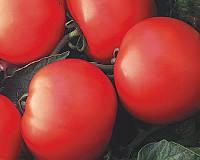 Семена томата детерминантного Дебют F1 Seminis 1 000 шт
