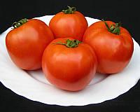 Семена томата детерминантного Таня F1 Seminis 1 000 шт