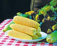 Семена сахарной кукурузы Спирит F1, от 5 г, Syngenta