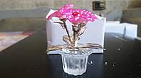 Цветок  в хрустальном горшке