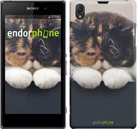 "Чехол на Sony Xperia Z1 C6902 Задумчивый кот ""936m-38"""