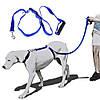 Поводок Для Собак The Instant Trainer Leash более 30 кг, фото 4