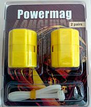 Прибор для экономии газа Magnetic Gas Saver дом и авто (Powermag), фото 2