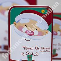 Печенье с предсказаниями «Милый Санта №2», 8 шт. в шоколаде