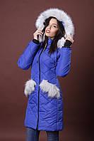 Зимняя женская молодежная куртка. Код К-83-36-17. Цвет яркий синий.