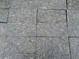 Бруківка гранітна кругляк в Києві, фото 5
