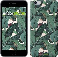 """Чехол на iPhone 6 Plus Банановые листья """"3078c-48"""""""