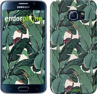 """Чехол на Samsung Galaxy S6 G920 Банановые листья """"3078c-80"""""""