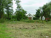 Снос деревьев Снос дерева (067) 409 30 70