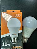 Лампа LED светлодиодная Евросвет 10 Вт, 3000К Е27 шар, фото 4