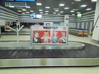 """Реклама в аэропорту """"Киев"""""""