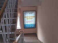Реклама на лайтбоксах в  университетах
