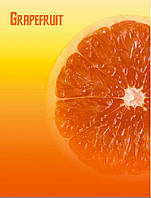Папка с 30 файлами L5103 Грейпфрут