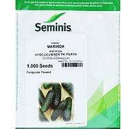 Семена огурца Маринда F1 (Seminis) 1000 семян - партенокарпик, ультра-ранний гибрид (40-45 дней)