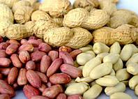 Землянной орех - арахис