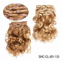 Трессы на клипсах SHC-CL-(01-15)_LeD