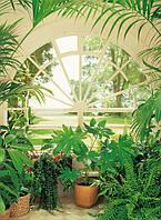 Фотообои Вид из окна Зимний сад №322 183x254см W+G