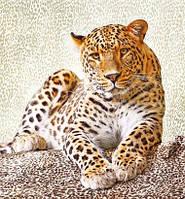 Фотообои Леопард 207х192 Люкс