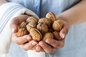 Грецкий орех – бизнес на десятилетия