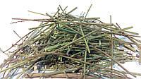 Вербена лекарственная трава 100 грамм