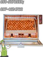 Инкубатор-автомат Господар-60 с переворотом и автоматическим поддержанием влажности на 60 яиц