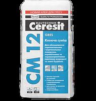 Клей для керамогранита и напольных плит СМ 12 25кг