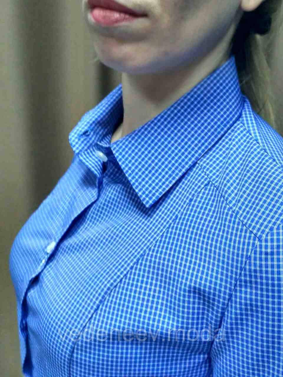 Синяя блуза в мелкую клетку