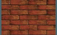 Плитка для фасада Colorado USA 9614 Strukturalna 245 x 65 x 6,5