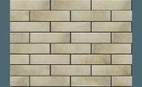 Плитка для фасада Retro brick SALT 1931 Strukturalna 245x65x8