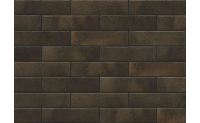 Плитка для фасада Retro brick CARDAMOM 1986 Strukturalna 245x65x8