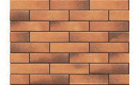 Плитка для фасада Retro brick CURRY  1979 Strukturalna 245x65x8