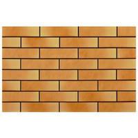 Плитка для фасада Złoty pył (goldstaub) 9492 Strukturalna 245x65x9
