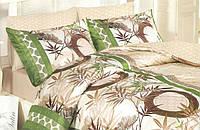 Полуторный комплект постельного белья (рисунок Античность)