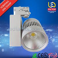LED светильник 30W LF-GDTCOB-30W1