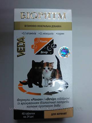 Биоритм(витаминный комплекс для котят)день-ночь.48 таб. , фото 2