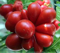 Райсе  томат, фото 1