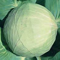 Семена капусты Белоснежка весовые