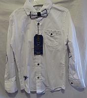 Детская рубашка на мальчика ( 3 цвета; 5-8 лет; про-во Турция)