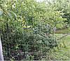 Сетка узловая, 1,6м