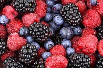 Украина активно вступает в глобальный ягодный рынок