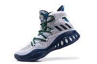 Баскетбольные кроссовки Adidas Crazy Explosive white
