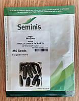 Семена огурца МАША  F1. Упаковка 250 семян. Производитель Seminis.