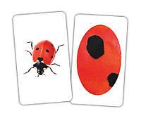 Увлекательная игра «Животное и фрагмент» от 1 года, фото 1