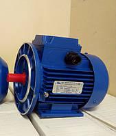 Электродвигатель АИРМ100S2 (АИР 100 S2) 380 В, 4 кВт, 3000 об/мин