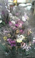 Орхидеи от 110 грн Высота 50-60см