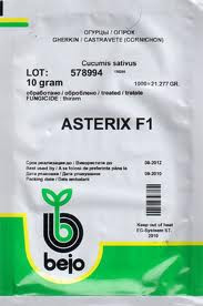 Семена огурца Астерикс F1 250 сем. Bejo (Бейо)