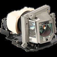 Лампа для проектора ACER (EC.J6900.001)
