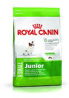 Royal Canin X-Small Junior - корм для щенков мелких пород от 2 до 10 месяцев 0,5 кг, фото 1